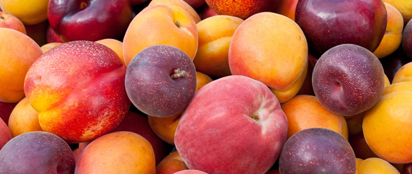 Juicy pile of peaches and plums to hydrate in hot weather.