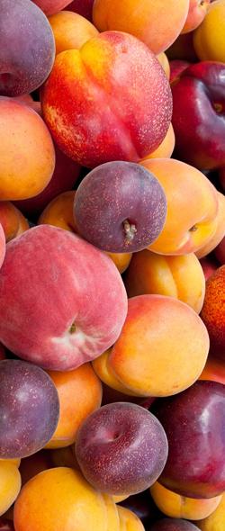 Peaches-Plum