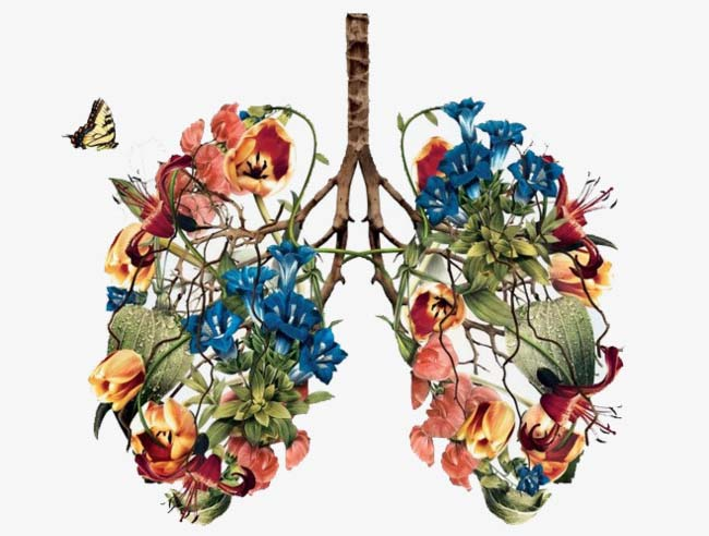 Graphic of a pair of lungs made of flowers