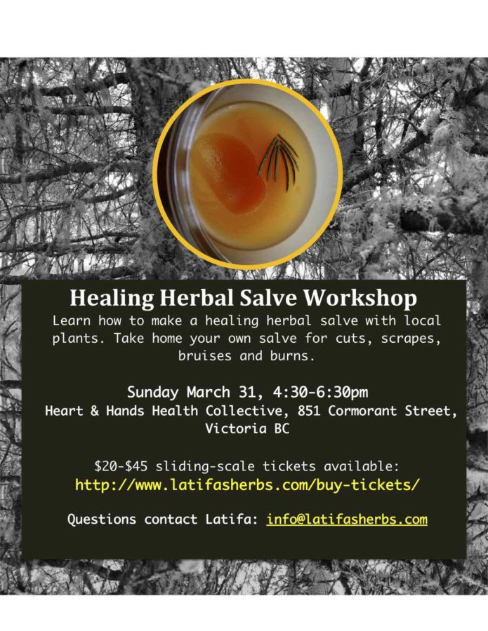 Healing Salve Workshop