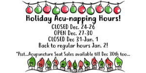 Christmas lights border with 2019 holiday hours
